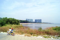 Shenzhen, china: shenzhen bay park visitors to ride a bicycle Royalty Free Stock Photos