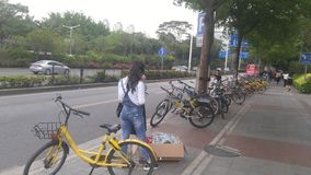 Shenzhen, China: sidewalk landscape, tourists and shared bicycles stock photography