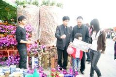 Shenzhen china: spring festival flower markets Stock Images