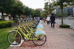 Shenzhen, China: street bike rental Stock Image