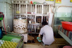 Shenzhen china: the supermarket chicken stalls Royalty Free Stock Images