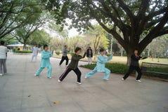 Shenzhen, China: Taijiquan Royalty Free Stock Photo