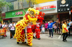 Shenzhen, China: temple festival parade, lion dance activities Stock Photos