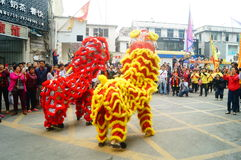 Shenzhen, China: temple festival parade, lion dance activities Royalty Free Stock Photography