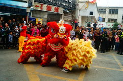 Shenzhen, China: temple festival parade, lion dance activities Stock Photography