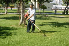 Shenzhen, China: to mow the lawn Stock Photography