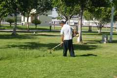 Shenzhen, China: to mow the lawn Royalty Free Stock Photos