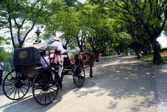 Shenzhen china, tourist attractions of the carriage Stock Images