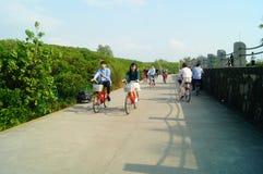 Shenzhen, China: tourists travel by bike in Shenzhen Bay Park Royalty Free Stock Image