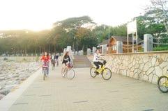 Shenzhen, China: tourists travel by bike in Shenzhen Bay Park Stock Photography