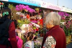 Shenzhen, china: winter jasmine flower market Royalty Free Stock Image