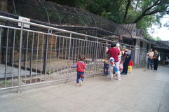 Shenzhen, China: zoo visitors Stock Photo