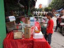 Shenzhen, Chine : marché d'animal familier Photographie stock libre de droits