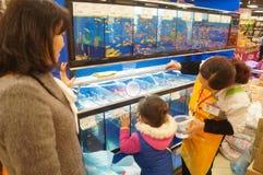 Shenzhen, Chiny: Centrów handlowych akwaria fotografia stock