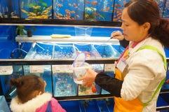 Shenzhen, Chiny: Centrów handlowych akwaria obraz stock