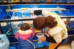 Shenzhen, Chiny: Centrów handlowych akwaria obraz royalty free