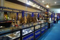 Shenzhen, Chiny: chabet biżuterii wystawy sprzedaże Zdjęcie Royalty Free