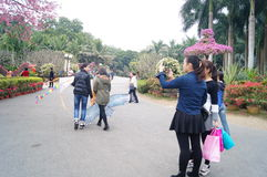 Shenzhen, Cina: Ospiti del parco di Lotus Hill Immagine Stock