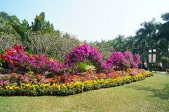 Shenzhen Kina: Lotus Hill parkerar landskap Royaltyfri Bild