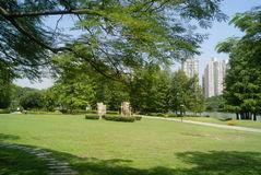 Shenzhen Kina: Parkera landskapet royaltyfri foto