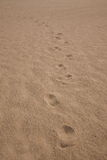 Shenzhen Meisha beach footprints in the sand hard Stock Image