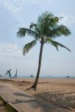 Shenzhen Meisha beach in palm beach Royalty Free Stock Photography