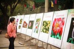 Shenzhen, porcelana: exposição da fotografia Fotografia de Stock