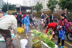 Shenzhen, porcellana: mercato degli agricoltori fotografia stock libera da diritti