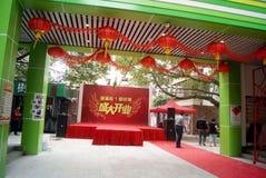 Shenzhen porslin: kommersiell gata för popo Arkivfoton