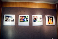 Shenzhen-Porzellan: Fotografieausstellung Lizenzfreie Stockfotos
