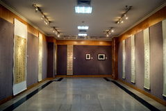 Shenzhen, Porzellan: Kalligraphie- und Fotografieausstellung Stockfotos