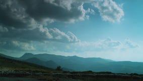 Shepard και κοπάδι της τρέχοντας γούρνας προβάτων ένας πράσινος τομέας απόθεμα βίντεο