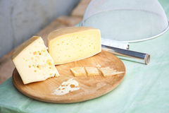Shepard's traditional cheese Royalty Free Stock Photography
