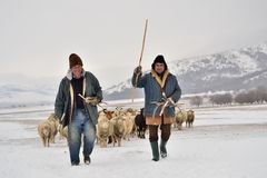 The shepherds Royalty Free Stock Photos