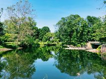 Free Shepaug River Summer Views Stock Photography - 161986222