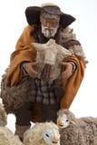 Sheperd en zijn schapen van de voederbak Stock Afbeeldingen