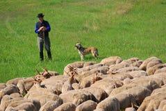 Sheperd, Hortobagy Nationaal Park, Hongarije Royalty-vrije Stock Foto
