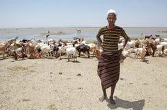 Shepheard africano Fotografía de archivo