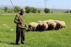 Shepherd2 Fotos de Stock