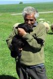 Shepherd6 Imagem de Stock Royalty Free