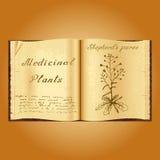 Shepherd& x27 ; bourse de s Illustration botanique Centrales médicales Livre ouvert d'Old de herbalist de livre illustration libre de droits