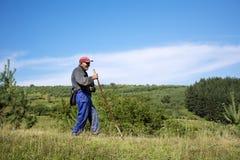 Shepherd con el pasto de las ovejas que se inclinan en su palillo Fotos de archivo