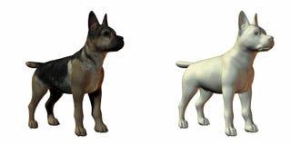 Shepherd dog 3d model royalty free stock image