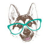 Shepherd dog head portrait of a character graphic, icon, waterco Royalty Free Stock Images