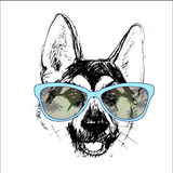 Shepherd dog head portrait of a character graphic, icon, waterco Royalty Free Stock Photos