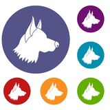 Shepherd dog icons set. In flat circle reb, blue and green color for web Royalty Free Stock Image