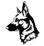 Shepherd Dog Portrait. Vector Illustration Stock Images