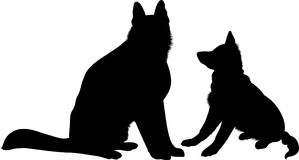 Shepherd Dogs.  German Shepherd dog breed vector Royalty Free Stock Images