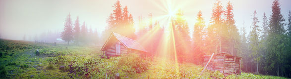 Shepherd huts in a misty forest Royalty Free Stock Photos