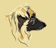 Shepherd mix. Dog profile drawn in a linear style Stock Images